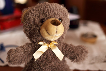 felice: Teddy con le braccia aperte