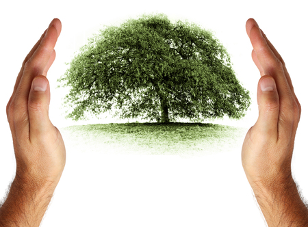 Pflege und zum Schutz der Umwelt