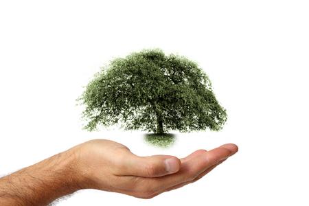 Pflege und Schutz der Umwelt 2