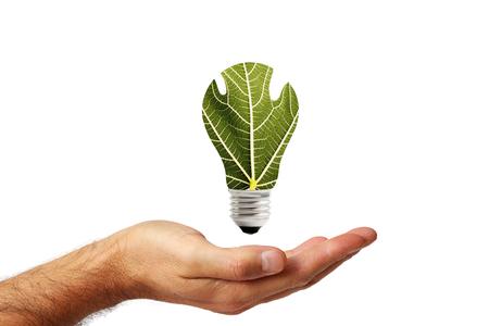 Konzept der erneuerbaren Energie 2