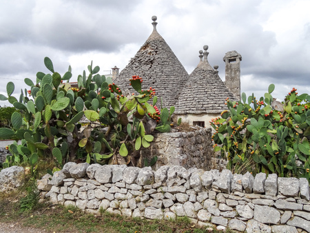 Trulli with prickly pear, traditional old houses