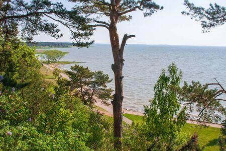 Beautiful landscape of the Curonian Spit and Lagoon, Nida, Klaipeda, Baltic Sea