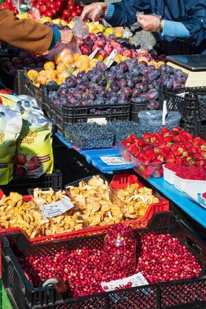 Various berries, strawberries, raspberries, blueberries, prunes and mushrooms on the grocery stand on the street food market. Summer fruits. Healthy food with vitamin. Colorful. Vertical