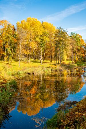 Wonderful autumn landscape with beautiful yellow and orange colored trees, lake or river, vertical