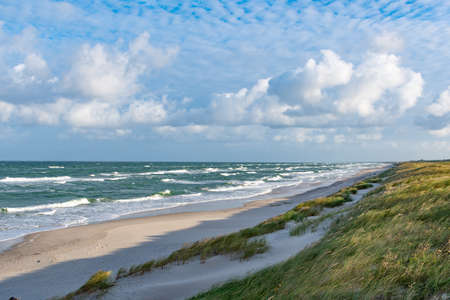 Rough sea with waves in autumn or winter, sandy beach and dunes with reeds and dry grass in the morning