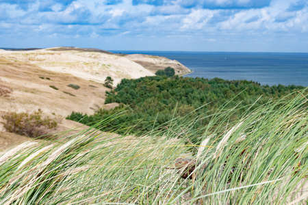 Nagliai Nature Reserve in Neringa, Lithuania. Dead dunes, sand hills built by strong winds, with ravines and erosion. Any human activity is prohibited in the reserve except for scientific observations Stock fotó