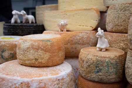 Variety homemade bio natural cheese