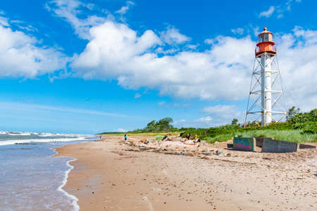 Pape Lighthouse in Latvia is a lighthouse located on the Latvian coast of the Baltic Sea Banco de Imagens