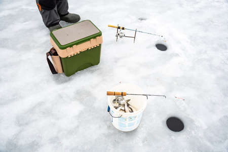 Coregonus albula fish, known as the vendace or as the European cisco, freshwater whitefish in a bucket on the ice, fishing on a frozen lake, close up view from above Stock fotó