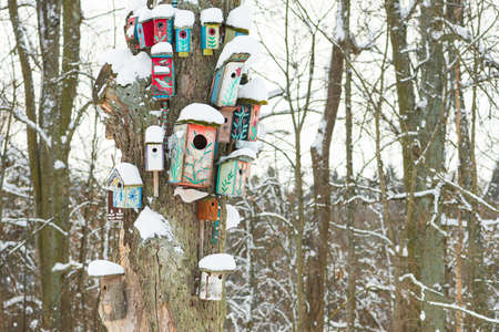 Group of beautiful colorful wooden bird houses with roofs covered by snow in a forest or park in winter