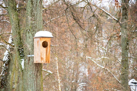 Wooden bird house with roof covered by snow in a forest or park in winter Stock fotó