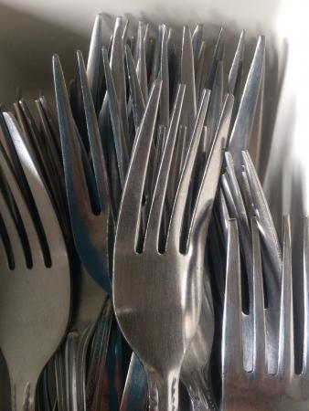 steel: Steel forks