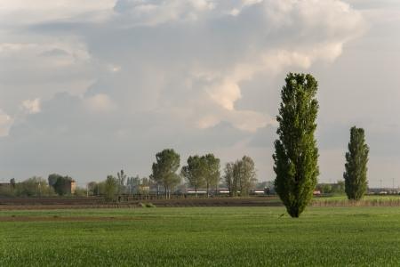 rurale: Plain of Verona - Italy Stock Photo