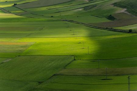 norcia: Castelluccio of Norcia - Umbria - Italy