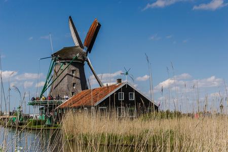 zaanse: Windmills in Zaanse Schanse - Netherlands