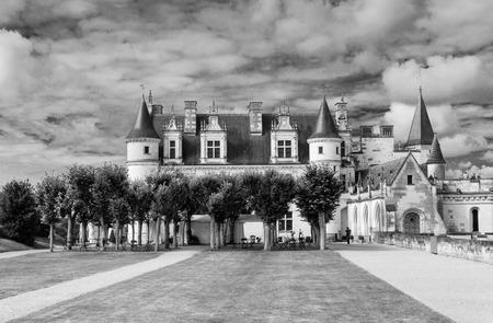 real renaissance: Castle of Amboise - France
