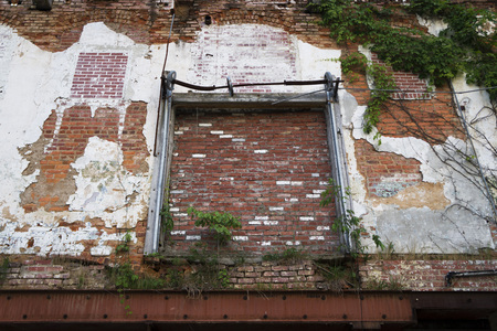 peeling paint: Abandoned warehouse exterior with brick wall, green vines, metal frame, and peeling paint