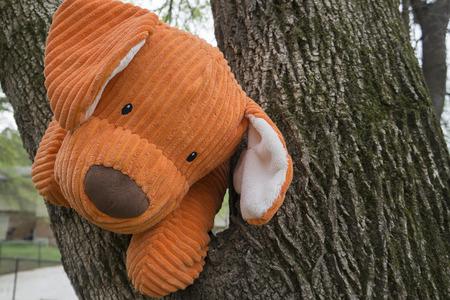 stuffed animal: Orange stuffed animal toy dog in tree