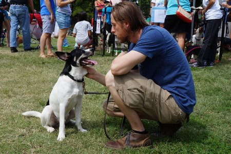 crowd tail: man petting a black and white dog at crowded park