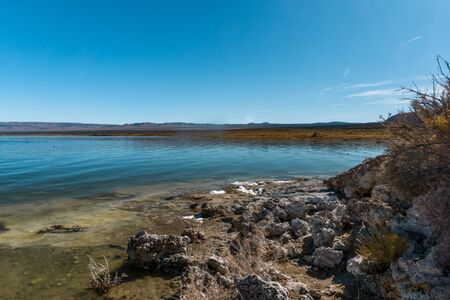 The Mono Lake, a soda lake is particularly alkaline and saline. On the shore and under water, tufa formations in bizarre shapes  can be found. 免版税图像
