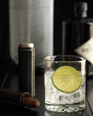 seltzer: Gin and Tonic
