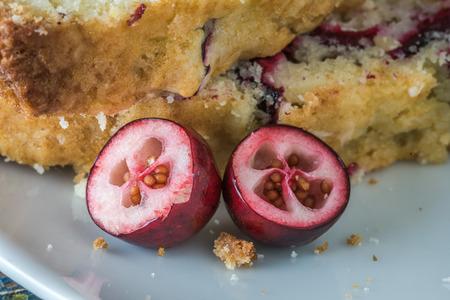 Cranberry Halves Reklamní fotografie