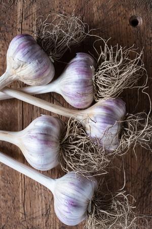 Garlic bulbs Banco de Imagens