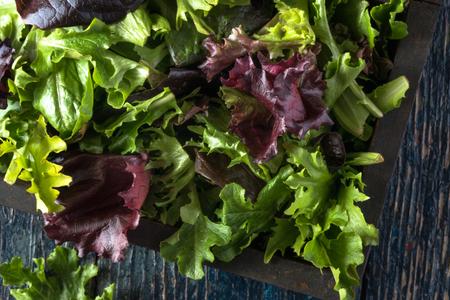 Freshly picked lettuce in wood box 写真素材
