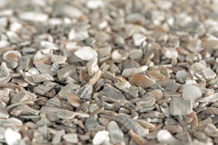 grit: Seashell grit