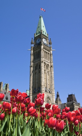 lunchtime: Corner view of the Parliament Centre Block Peace Tower at lunchtime in spring