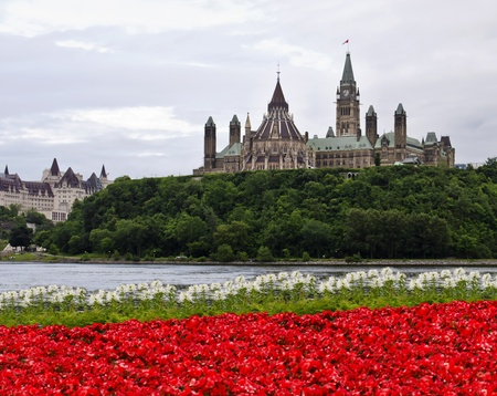Het Canadese parlement met rode en witte bloemen overkant van de rivier in Gatineau Stockfoto