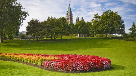 The canadian Parliament Peace Tower seen from Major