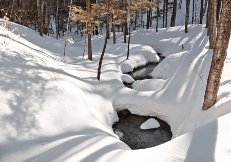 Winter scene in forest with snow, running creek and shadows