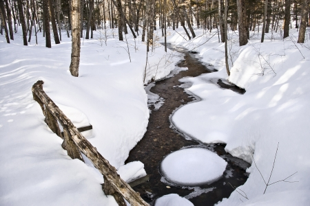 A morning winter stream in the forest covered in snow  Stock Photo