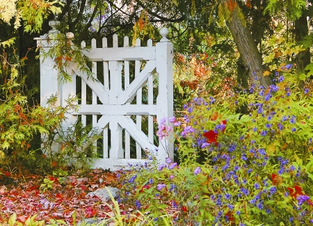 A white wooden gate remains closed amidst the beauty of autumn in cottage country not far from Ottawa, Canada.
