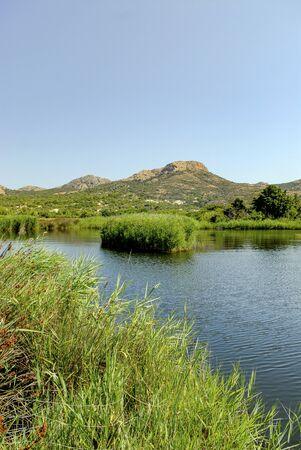Foce pond, Ostriconi, Balagne, Corsica