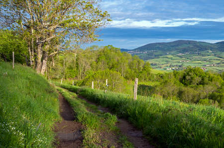 Spring hilly landscape in the Monts du Lyonnais in France in the Rhône department