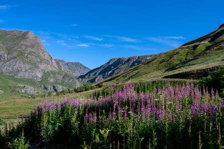 High mountain landscape in the Vanoise National Park in summer in Savoie in France around the Col de l'Iseran