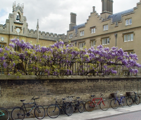 Students bicycles near wall of Cambridge university Stock Photo