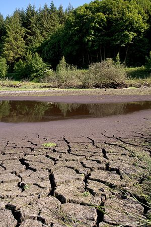 Small lake drying out in the summer Stock Photo - 4956007