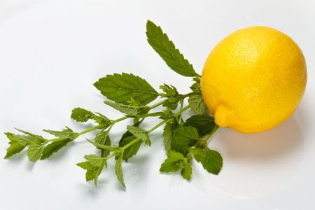 Lemon and lemon balm on a white plate