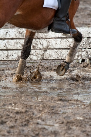 Pony riding in the mud