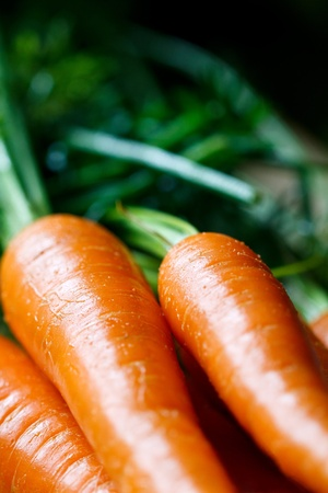 fresh carrots Archivio Fotografico