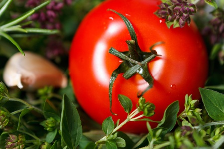 Tomatoes in black bowl with herbs Archivio Fotografico