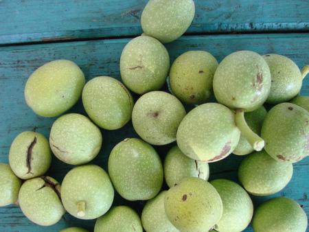 walnut milk ripeness in green peel in bulk on a screw of a green wood background