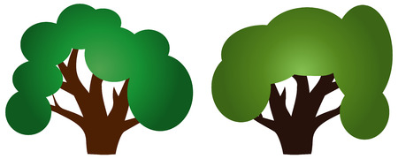 Two trees with green crowns and thick trunks