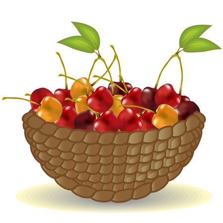 Basket from the vine without a handle full of ripe cherries, berries