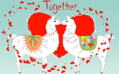 Two lovers kissing llamas surrounded by hearts. Love is in the air. Inscription Together in surrounded by lesser hearts, postcard, Valentines day