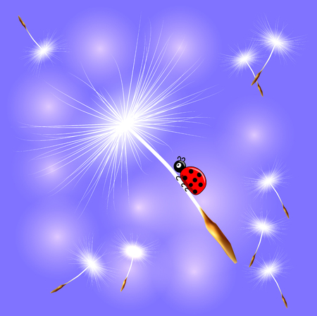 The ladybird flies on the dandelion seed on an abstract blue background. Spring, flight, dream.