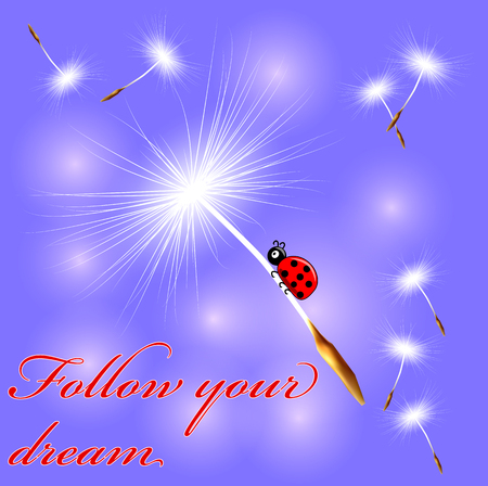 The ladybird flies on the dandelion seed on an abstract blue background. Spring, flight, dream. inscription follow your dream